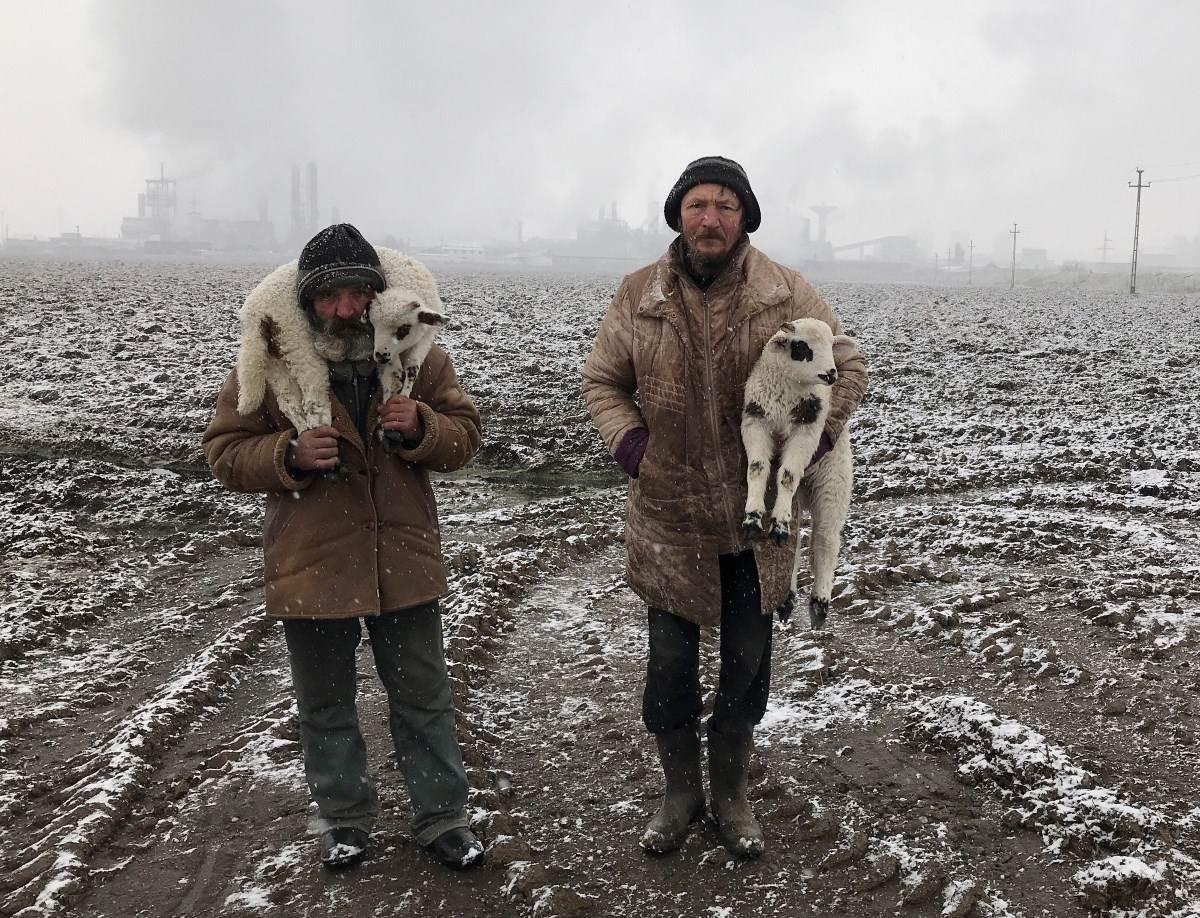 Ištvan Kerekeš: Transilvanijski pastiri, prva nagrada IPPAWARDS 2021
